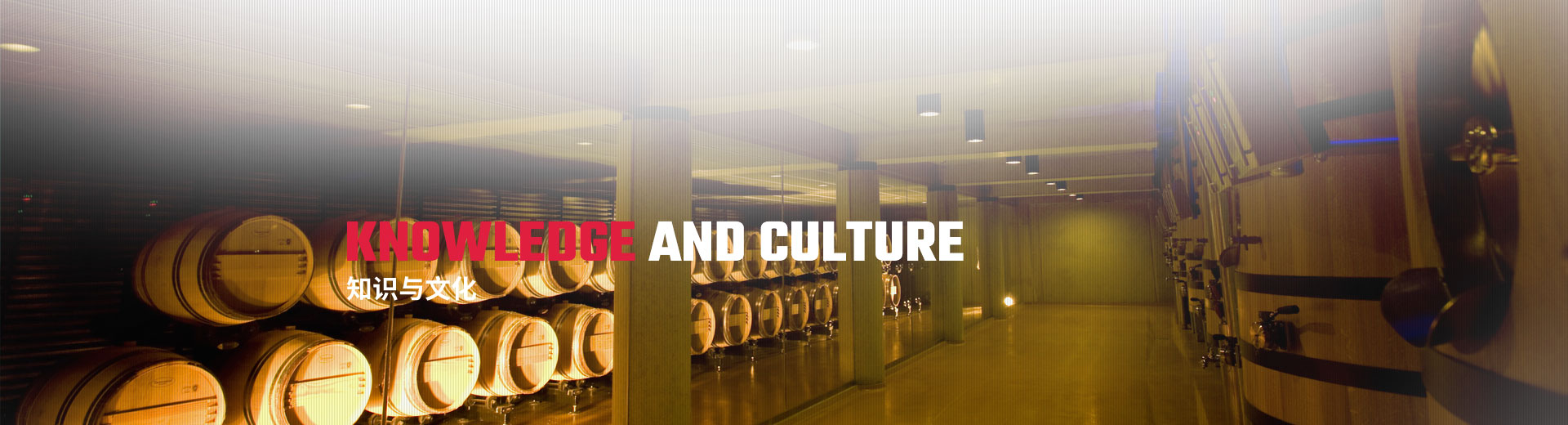 知识与文化
