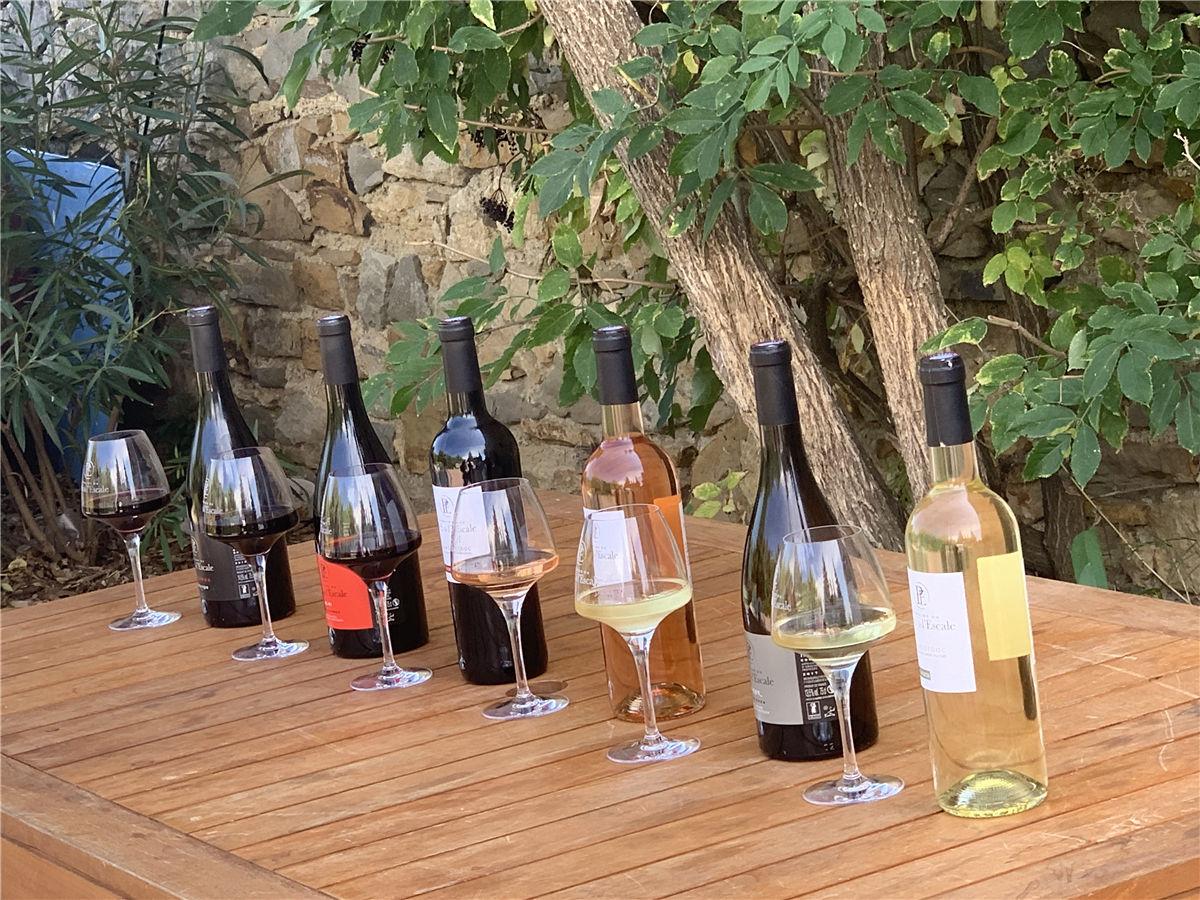 2019年8月31日爱醇采购部带大家参观法国南部爱斯卡特酒庄