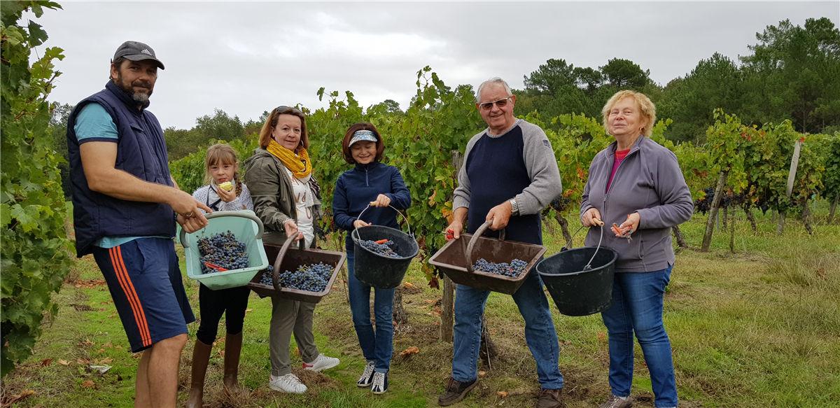 2019年10月又到了波尔多葡萄成熟季节了